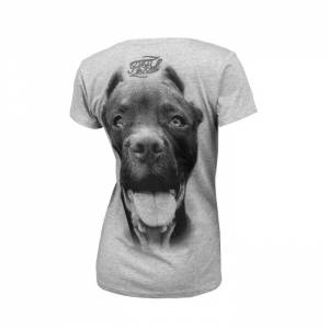 Women T-shirt Pitbull Ir Grey